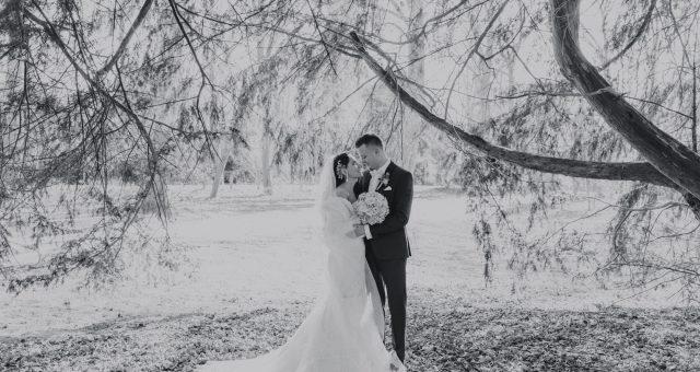Irina & Vadim - Hochzeit